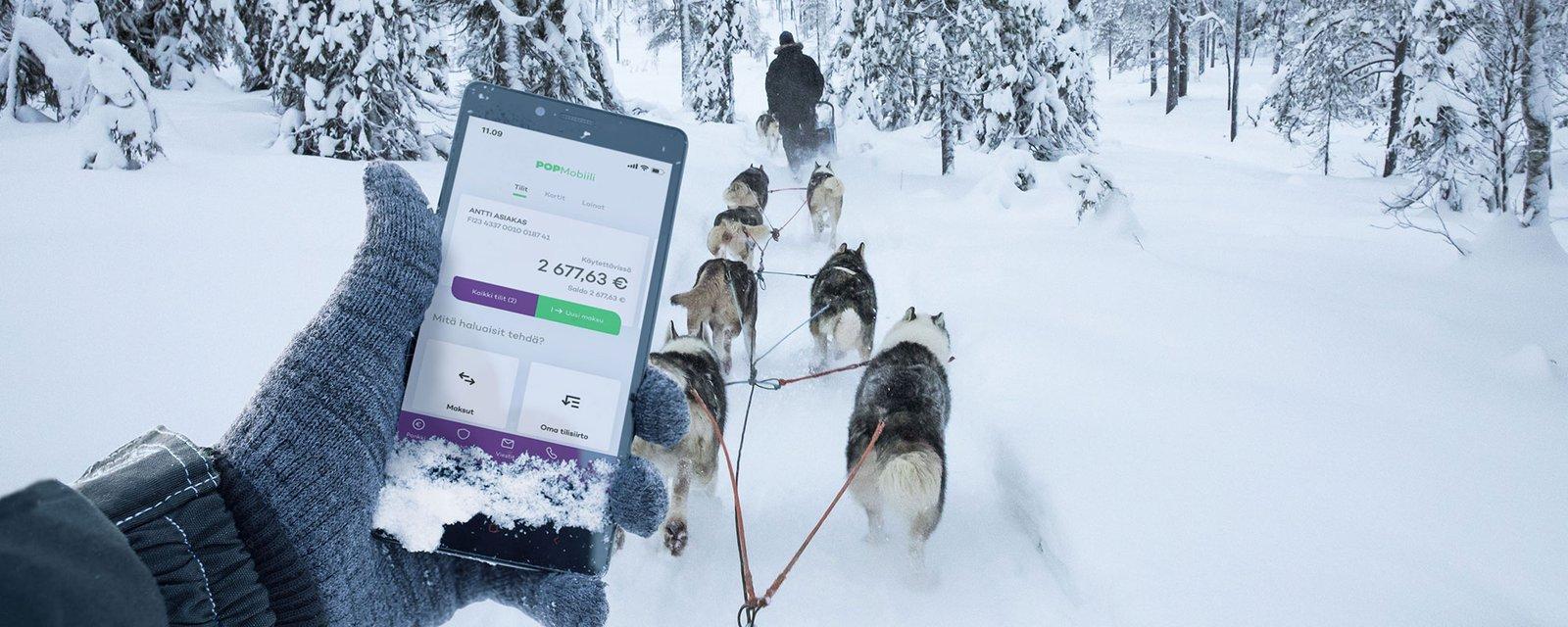 POP Mobiili ja koiravaljakko, kuvituskuva.